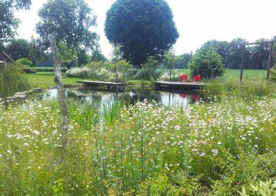 Tuinen van Geerdink - Zwemvijvers